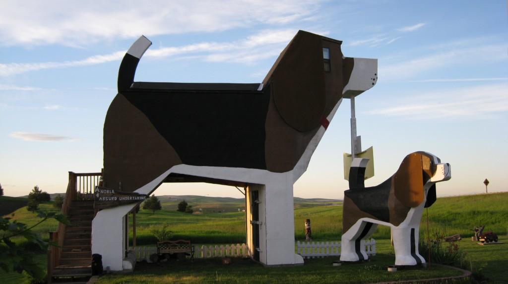 alojamiento diferente perro airbnb
