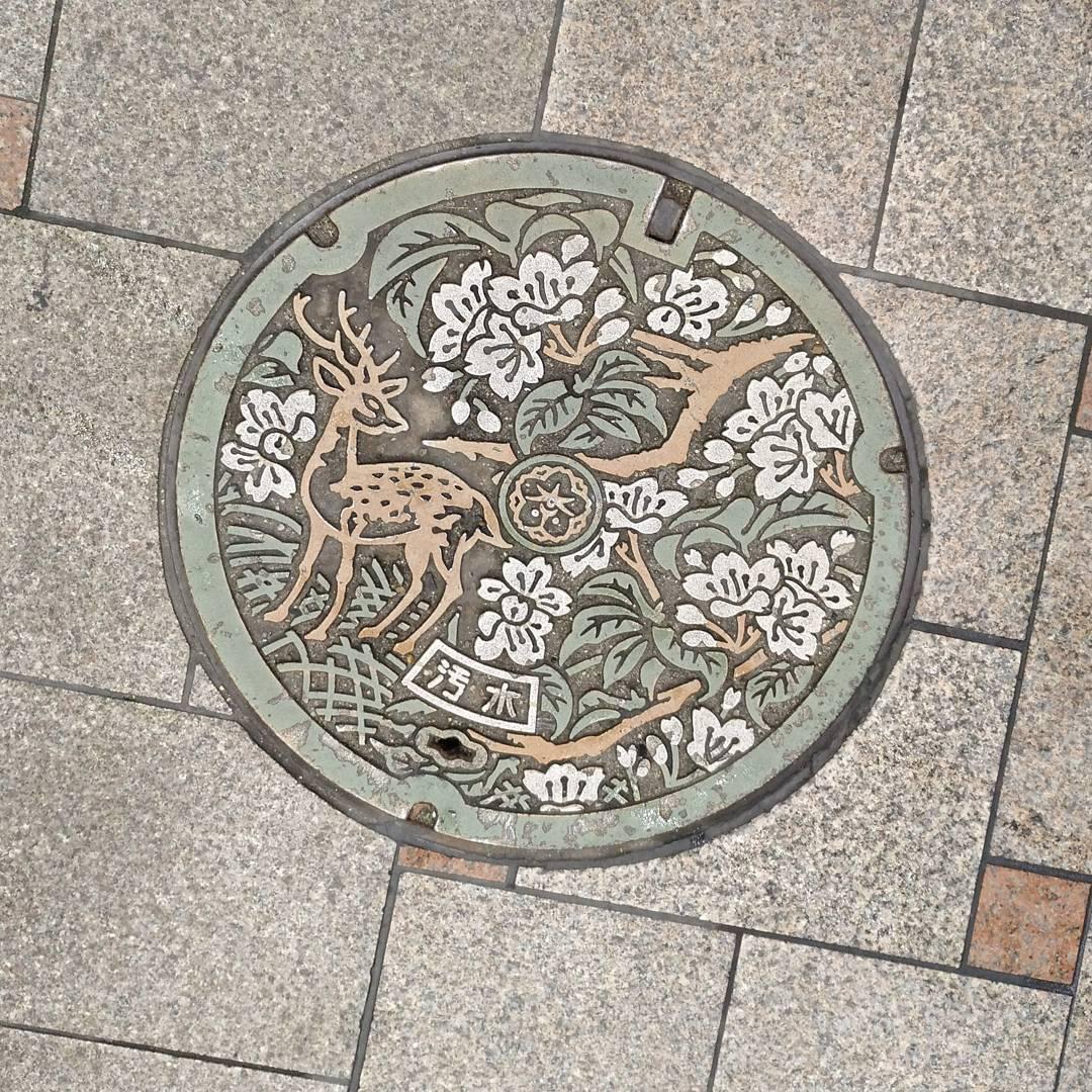 alcantarillas japonesas 2