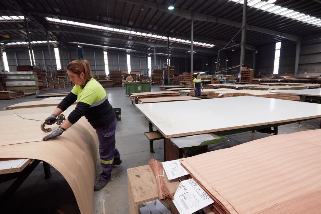 La producción de la chapa de madera combina un trabajo industrial con uno puramente artesanal